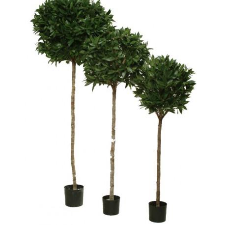 Location de plantes et arbustes artificielles facile for Boule de buis artificiel 50 cm pas cher